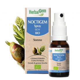 NOCTIGEM - Spray - 10 ml | Herbalgem