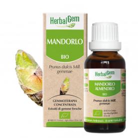 MANDORLO - 15 ml | Herbalgem