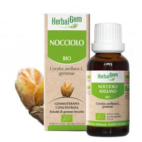 NOCCIOLO - 15 ml   Herbalgem