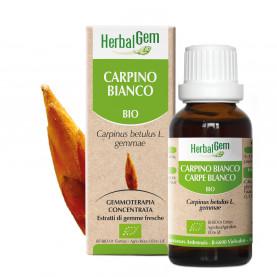 CARPINO BLANCO - 15 ml | Herbalgem