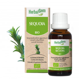SEQUOIA - 15 ml | Herbalgem