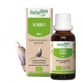 SORBO - 15 ml | Herbalgem