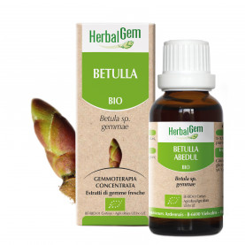 BETULLA - 50 ml | Herbalgem