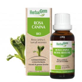 ROSA CANINA - 50 ml | Herbalgem