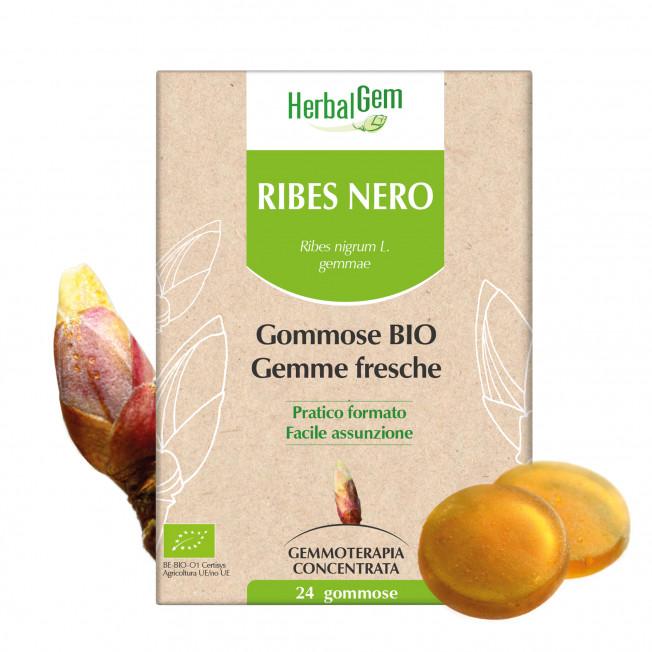 RIBES NERO - 24 gommose | Herbalgem