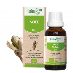 NOCE - 50 ml | Herbalgem