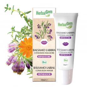 Balsamo Labbra consolida - 10 ml | Herbalgem